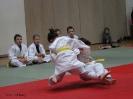 Weihnachtsfeier Judo 2013_13