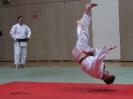 Weihnachtsfeier Judo 2013_14
