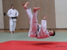 Weihnachtsfeier Judo 2013