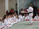 Weihnachtsfeier Judo 2013_21