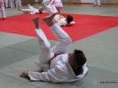 Weihnachtsfeier Judo 2013_28