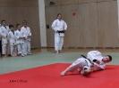 Weihnachtsfeier Judo 2013_38
