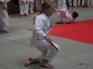 Weihnachtsfeier Judo 2013_9